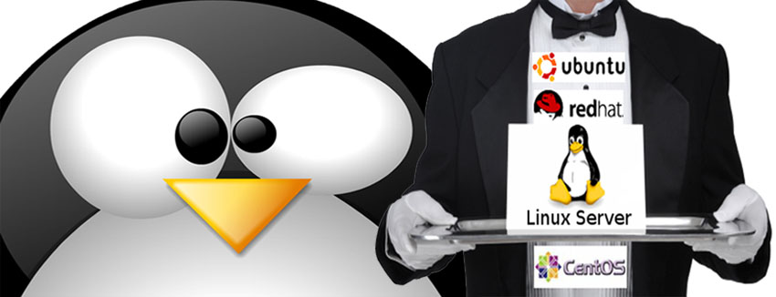 consult-linux